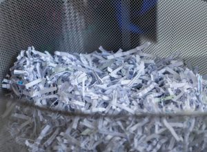 Protect Your Business and Customers: How To Choose The Best Mobile Shredding Houston- Based Company
